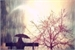 Fanfic / Fanfiction Um Verão chuvoso ( Parte 1)