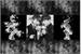 Fanfic / Fanfiction A Despedida • jikook •