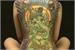 Fanfic / Fanfiction A Droga da Tatuagem