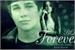 Fanfic / Fanfiction BiQue Forever (Terceira Temporada)