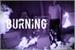 Fanfic / Fanfiction Burning