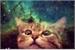Fanfic / Fanfiction I am a cat (imagine bts crack )