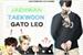 Fanfic / Fanfiction Jaehwan, Taekwoon e o gato Leo