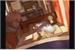 Fanfic / Fanfiction Super onze reverso (OVA)