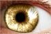 Fanfic / Fanfiction Três ratos e um medalhão: Olhos dourados