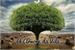 Fanfic / Fanfiction A Árvore da Vila