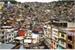 Fanfic / Fanfiction Favela da Mato grosso