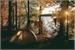 Fanfic / Fanfiction (Interative BTS ) floresta do horror