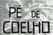 Fanfic / Fanfiction Pé de Coelho
