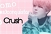 Fanfic / Fanfiction Como (Des)conquistar o Crush