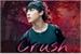 Fanfic / Fanfiction Crush ~ Imagine Jimin [BTS]