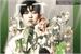 Fanfic / Fanfiction Janela Verde