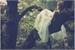Fanfic / Fanfiction A Historia De Anghel