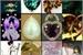 Fanfic / Fanfiction As 6 Pedras Mágicas