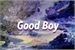 Fanfic / Fanfiction Good boy