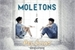 Fanfic / Fanfiction Moletons e Pelúcias
