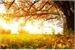 Fanfic / Fanfiction Stormy - O Lado Doce da Floresta