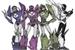 Fanfic / Fanfiction Transformers Academia De escolha (Interativa)