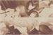 Fanfic / Fanfiction O tigre, o cervo e a grua