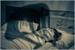 Fanfic / Fanfiction Paralisia do Sono