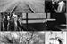 Fanfic / Fanfiction Stales - A cidade dos Lobos Interativa