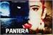 Fanfic / Fanfiction A Pantera Negra