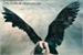 Fanfic / Fanfiction The Dark Angel