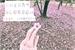 Fanfic / Fanfiction Cherry Blossom //jjk