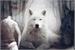 Fanfic / Fanfiction Coração de Lobo