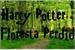 Fanfic / Fanfiction Harry Potter e a Floresta Perdida