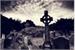 Fanfic / Fanfiction O fervo no cemitério