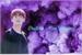 Fanfic / Fanfiction Destino - Kim Taehyung ( V - Bts)