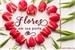 Fanfic / Fanfiction Flores em sua porta