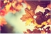 Fanfic / Fanfiction Folhas do outono