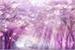 Fanfic / Fanfiction Caminho das Sakura's