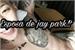 Fanfic / Fanfiction Esposa do jay park!?