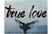 Fanfic / Fanfiction ;true love