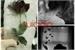 Fanfic / Fanfiction Uma garota suicida