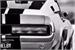 Fanfic / Fanfiction White Mustang