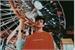 Fanfic / Fanfiction Friendzone - Aaron Carpenter