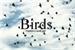 Fanfic / Fanfiction .: Birds :.