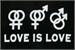 Fanfic / Fanfiction .você não é homofóbica