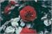 Fanfic / Fanfiction Boy Of The Roses - !Yaoi!