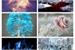 Fanfic / Fanfiction Entre Mundos 3 - Mundo das Cinzas (PAUSADA)