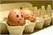 Fanfic / Fanfiction KookMon e os dois ovos