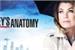 Fanfic / Fanfiction Melhores frases de Grey's Anatomy