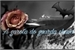 Fanfic / Fanfiction A garota do guarda chuva - Especial Halloween, Twoshot