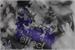 Fanfic / Fanfiction Butterfly Effect (Namjin Mpreg)