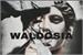 Fanfic / Fanfiction Waldosia