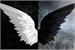 Fanfic / Fanfiction Demonkingu vs hiro